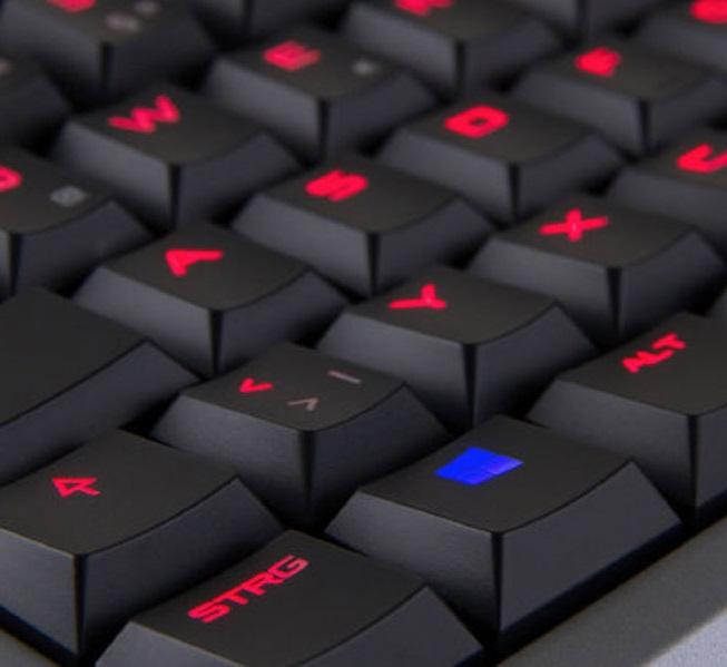 Cherry MX 6.0 Image Thumbnail 3